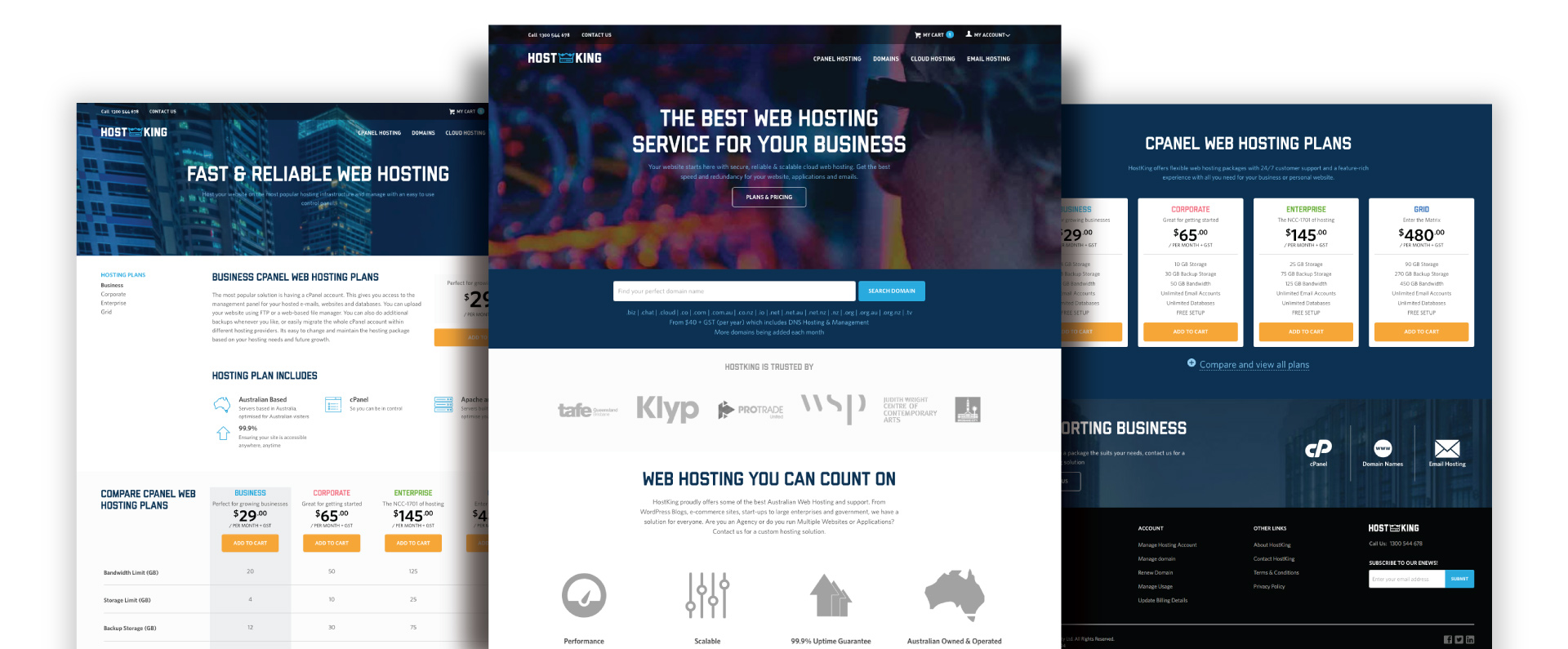 Hostking website design
